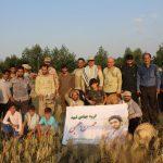 جهادگران سپاه ناحیه فومن با اعزام به یکی از روستاهای کم برخوردار فومن و کمک به ۵ کشاورز این منطقه موجبات خوشحالی کشاورزان را فراهم کردند/تصاوير